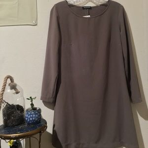 American Apparel Taupe Crepe Shift Dress